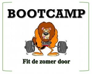 bootcamp plaatje.jpg